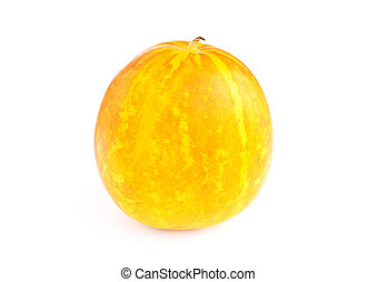 Cantaloupe melone isolated