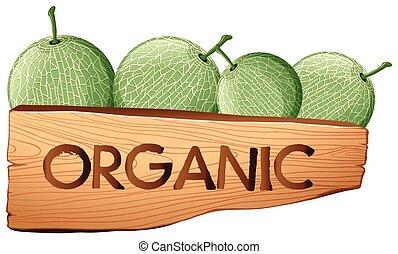 cantalupo, frutte, e, organico, segno