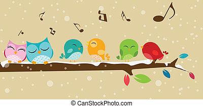 cantando, pássaros, ramo
