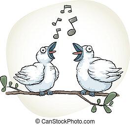 cantar, pájaros cantor