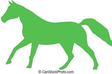 Canter - Horse running