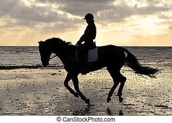 cantering, strand, hest, silhuet, rider