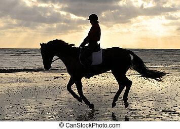 cantering, tengerpart, ló, árnykép, lovas