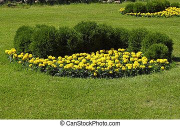 cantero, en, hermoso, jardín