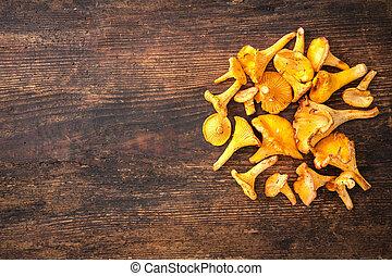 Cantharellus cibarius, chanterelle mushrooms