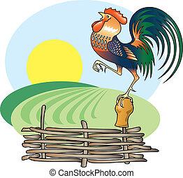 canto, gallo, y, mañana, sun.