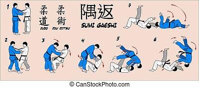 canto, judo, reversão