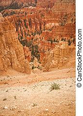 Canyon Bryce beautiful rocks