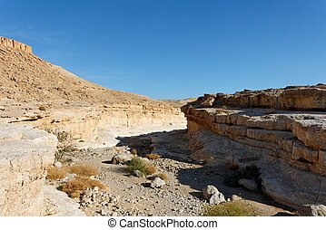 Canyon in the rocky desert in the Middle East