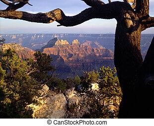 canyon, nord, grande, rim1