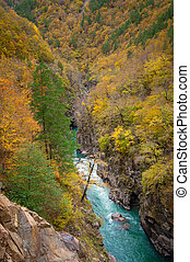 Canyon of mountain river in fall season