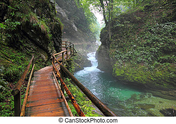 Canyon Vintgar, Triglav - Slovenia, - River in green forest ...