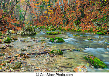 canyon with mountain river, beautiful natural location in autumn in the mountains