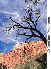 canyons, ind, den, fastslå af utah