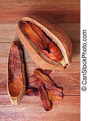 caoba, semilla