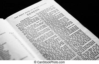 capítulo, 1, bible., gênesis, santissimo
