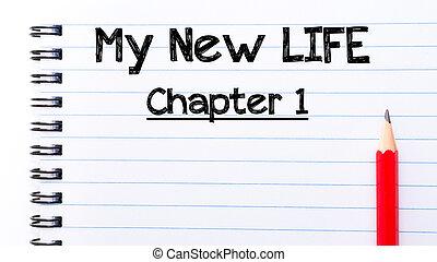 capítulo, vida, texto, um, escrito, caderno, novo, meu,...
