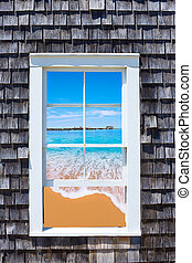 cap, fenêtre, morue,  photomount,  Massachusetts