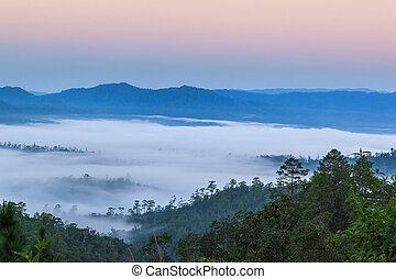 capa, de, montañas, en, el, niebla, en, salida del sol, tiempo, wiang, haeng, chiang mai provincia, tailandia