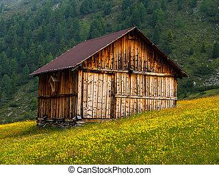 capanna, alpino