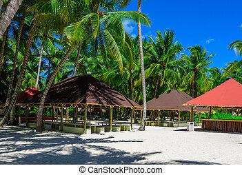 Palapa foglie sunroof albero tetto capanna palma for Piani casa tetto a capanna