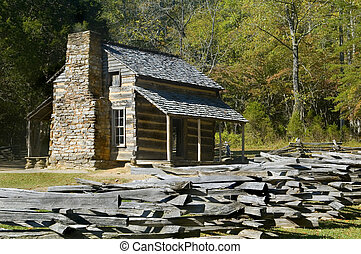 capanna di tronchi, cades, baia, grand'affumicato montagne nazionale parco