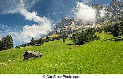 capanna, in, alpino, prato