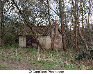 capanna, terreno boscoso