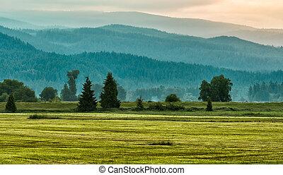 capas, montaña, árboles verdes