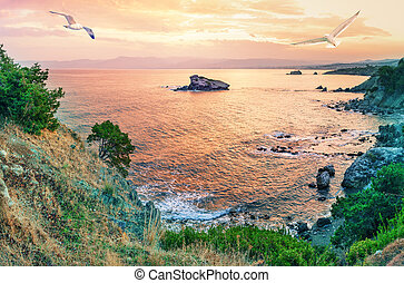Cape Akamas Bay with seagulls in sky at sunset