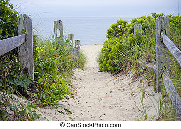 A beach pathway leading to the sea on Cape Cod in Massachusetts.
