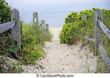 Cape Cod Beach Pathway