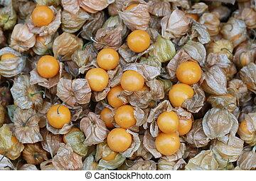 cape gooseberry, fruit background