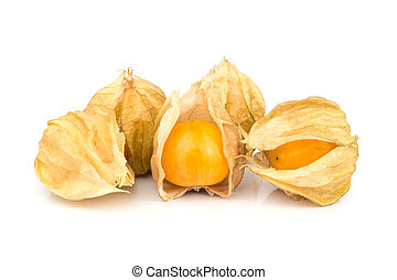 Cape Gooseberry. - The cape gooseberry is a relative of the...