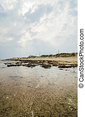 Cape Hatteras National Seashore on Hatteras Island North ...