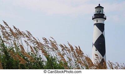 Cape Lookout Light Loop