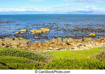 Cape of Good Hope Nature Reserve, False Bay, Cape Peninsula,...