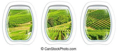 Cape Town on window - Three plane windows on grapevine of ...
