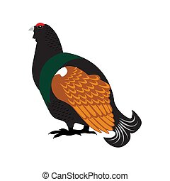 Capercaillie bird flat icon on white background.