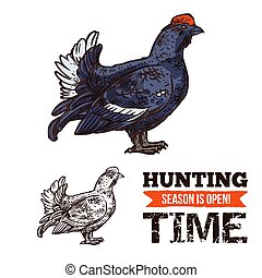 Capercaillie bird sketch hunting season poster - Hunting...