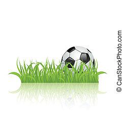 capim, isolado, bola, fundo, branca, futebol