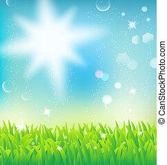 capim, natural, paisagem, luz solar