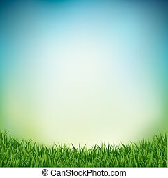 capim, paisagem verde