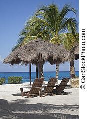 capim, tropicais, cabana, praia