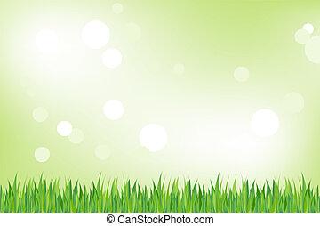 capim, verde