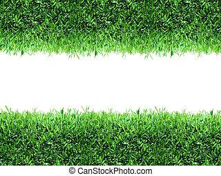 capim, verde, primavera, fundo