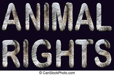 capital, animal, locution, intérieur., fourrure, lettres, ...