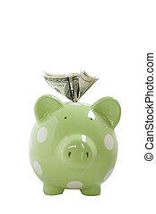 Capital Gain  - One Hundred Dollar Bills in Piggy Bank