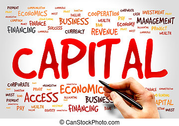 CAPITAL word cloud, business concept