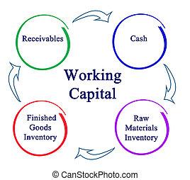 capitale, lavorativo
